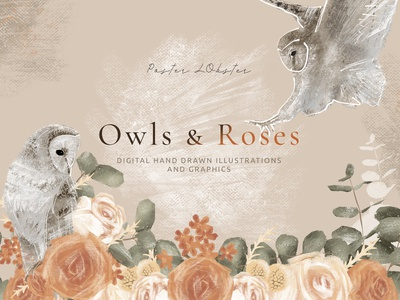 Owls & Roses Hand drawn Graphics