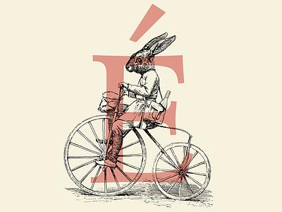 Shoot Etiquette branding graphic  design engraving illistration