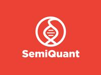 SEMIQUANT - Logo Design