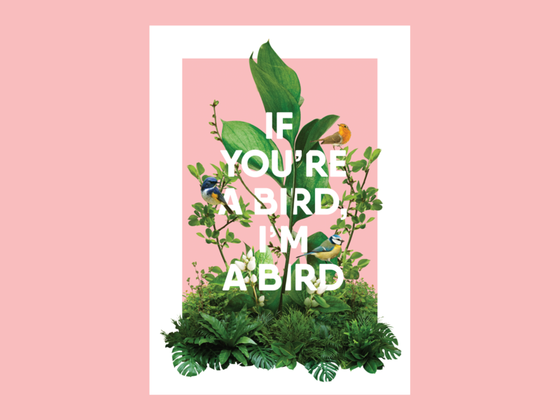 Photo Collage Poster pink green plants nature bird poster collage