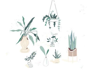 Plants illustration mcm modern warm cozy house plant pottery pot hygge home fern snake plant hanging plant monstera