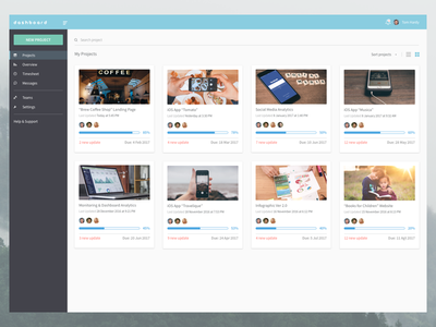 Project Management Dashboard   Exploration card web sketch flat ui management project dashboard