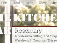 Kitchen Window Gardener