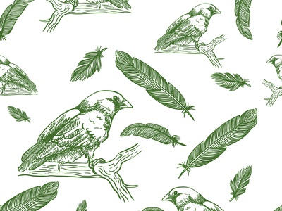 Birds and feathers seamless
