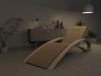 Organic ChaiseLounge - Furniture Design
