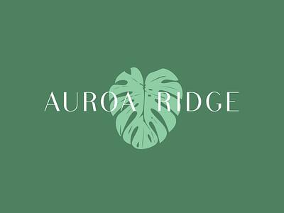 Auroa Ridge - Brand Identity branding design logodesign brand logo design cosmetics beauty simple sustainable plant monstera clean organic identity branding logo skincare