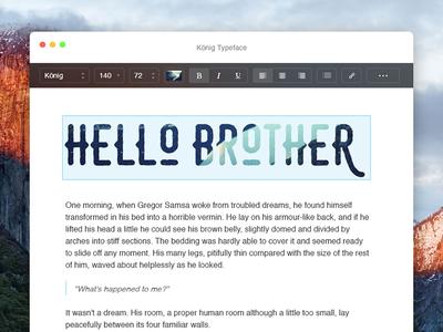 Day 043 - Text Edit ui flat clean editor capitan el mac apple osx edit text