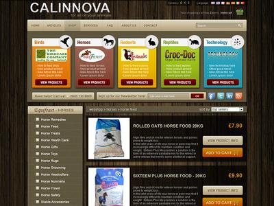Calinnova web site design