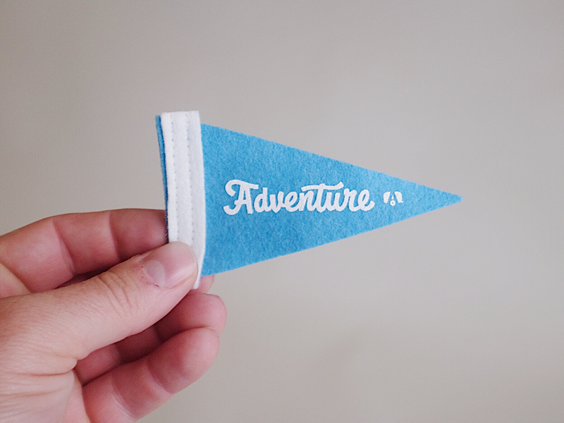 Little Adventure Pennants