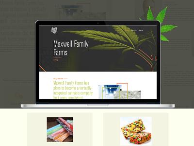 Website design for Cannabis extraction & processing ux animation typography logo website vector illustration branding web ui design
