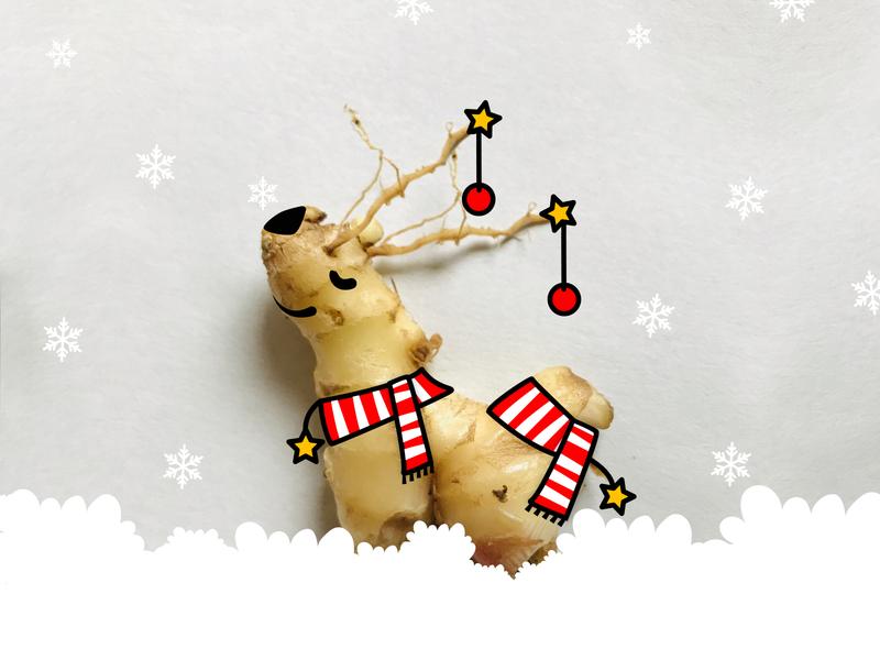 Hello, I am Ginger! happy holidays dog deer cozy happy merry chirstmas illustrator photography adobe illustrator adobe photoshop cc typography art vector typogaphy design minimal designer portfolio designer illustration flat