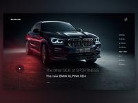 Alpina web design concept