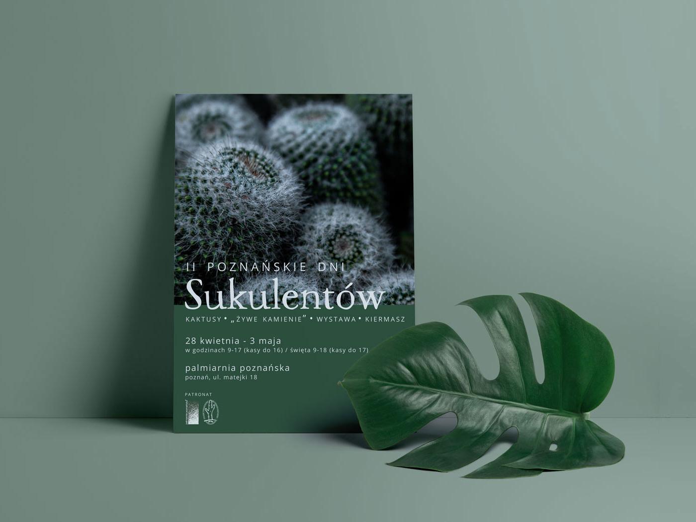 Poznańskie Dni Sukulentów cactus green succulents poster design poster plants flyer design flyer