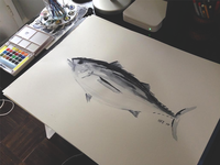 Tuna Watercolor
