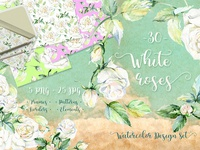 Delicate White Roses PNG Watercolor Set Illustration