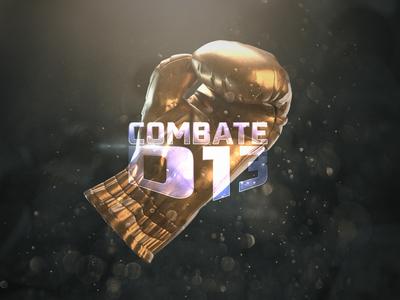 COMBATE D13