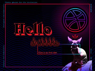Hello Dribbble! dribbble hello hellodribbble firstshot cat sphynx typography design illustration