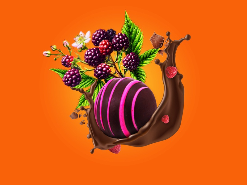 RASPBERRY TRUFFLE truffle raspberry photography design art graphic photoshop design