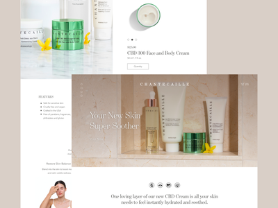 Chantecaille Landing Page beauty product skincare web design website ui design graphic design