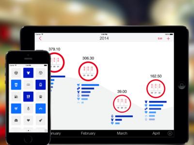 Next for iPad ipad ios next finances ui expenses iphone