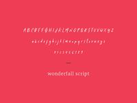 Wonderfall Script