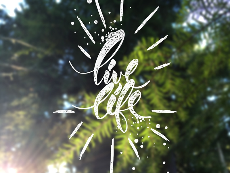 Live Life tecture color design nature tree illustration vector lettering letter type