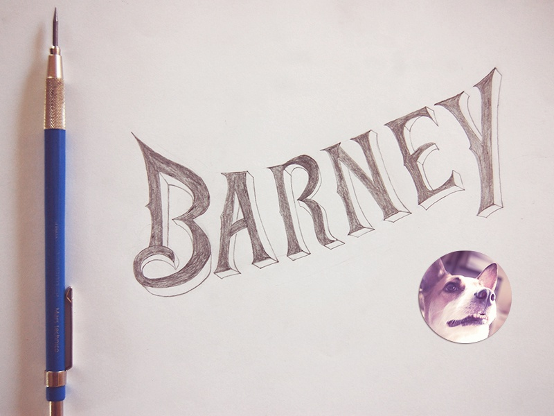 Barney - One of our 7 rescued mutts mutts hand-lettering dogs dog love delight animals lettering sketching mutt