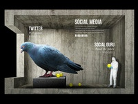 Twitter Room