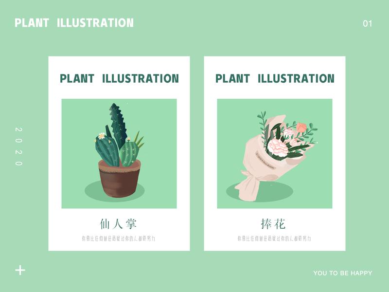 plant  illustration 插画 仙人掌 花 植物 music art app ui