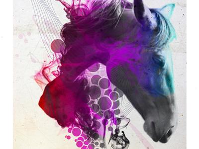 Mo Chroí  abstract art portrait design retro animal horse pride