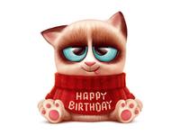 Gift Cat (for vk.com)