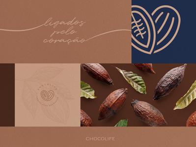 Chocolife | Rebranding & Visual Identity 03 look and feel logo design branding concept branding and identity branding design branding brand identity brand design brand