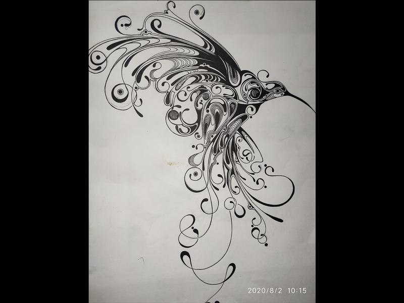 Humming Bird Doodle drawing