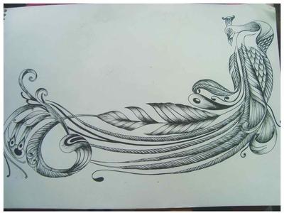 Peacock in Pen Sketch