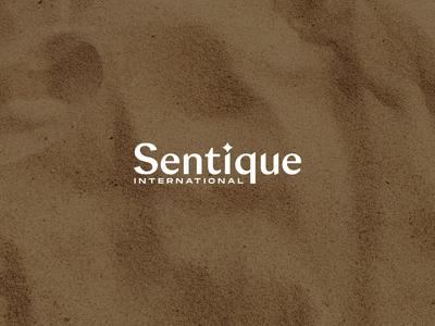 Sentique | Secondary Logo sand brand assets brand identity graphicdesigner logodesigner graphicdesign gold star stylish bold feminine cosmetics beauty logo typography branding elegant icon