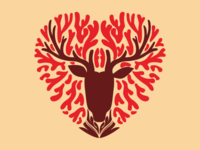 Heart of deer