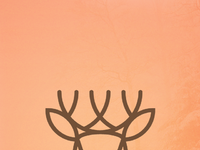 Forestlife deer wallpaper