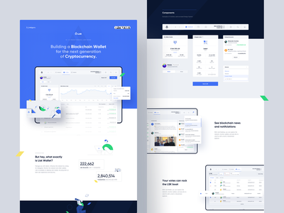 Lisk — Wallet / Behance Case Study design lisk cryptocurrency crypto wallet blockchain product design interaction ux