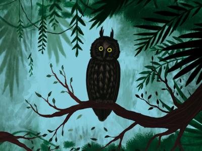 Album illustration