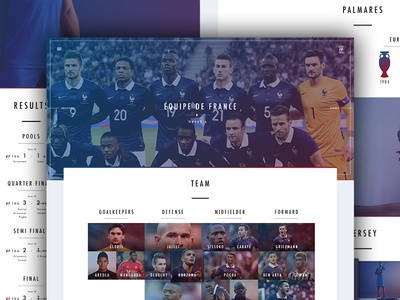 Team Page - Euro 2016 france soccer football euro website webdesign web