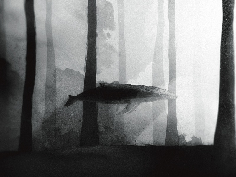 Whale black and white swimming photoshop texture shadows noise