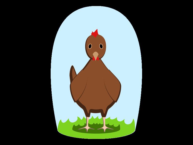 Explorations #451347 vector illustration animal chicken