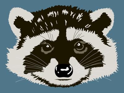 Raccoon Head - WIP