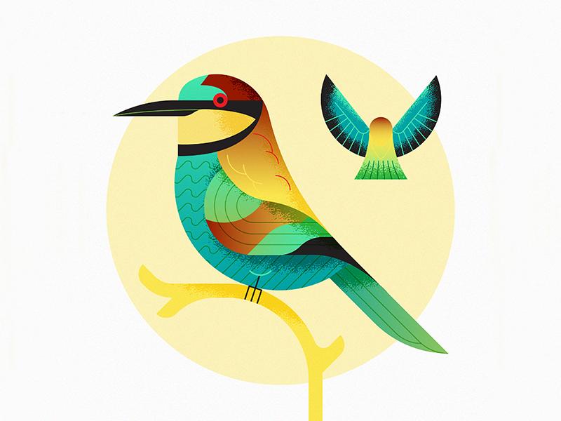 European Bee-Eater (Abejaruco Europeo) design flat illustration art nature texture retro flat vector illustration bird