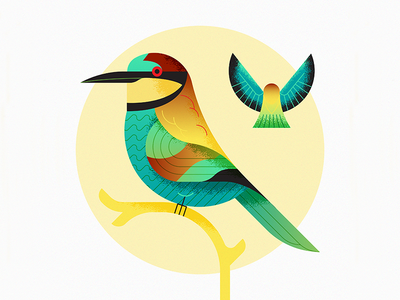 European Bee-Eater (Abejaruco Europeo)