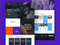 NOE Network — Homepage