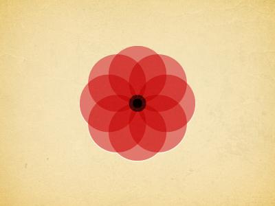 11 poppy remembrance november