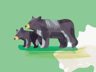 Plein Air Bear yellowstone bear cub black bear map plein air illustration bear