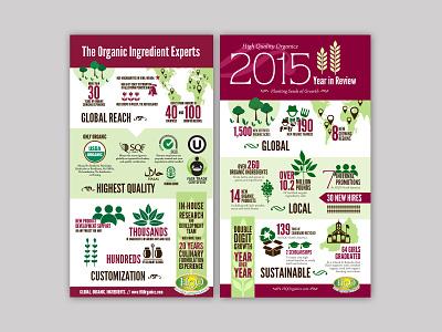 HQO Infographics infographic design illustration design