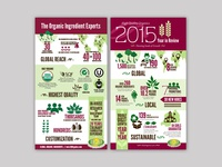 HQO Infographics